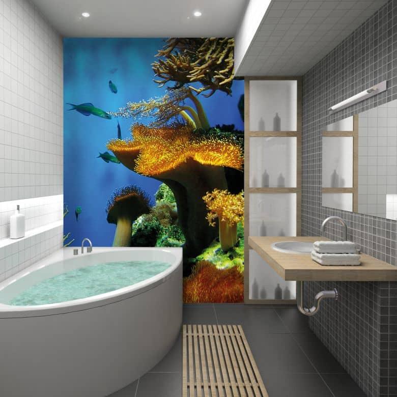Fototapete Korallenriff - Beeindruckende Unterwasseransicht | wall ...