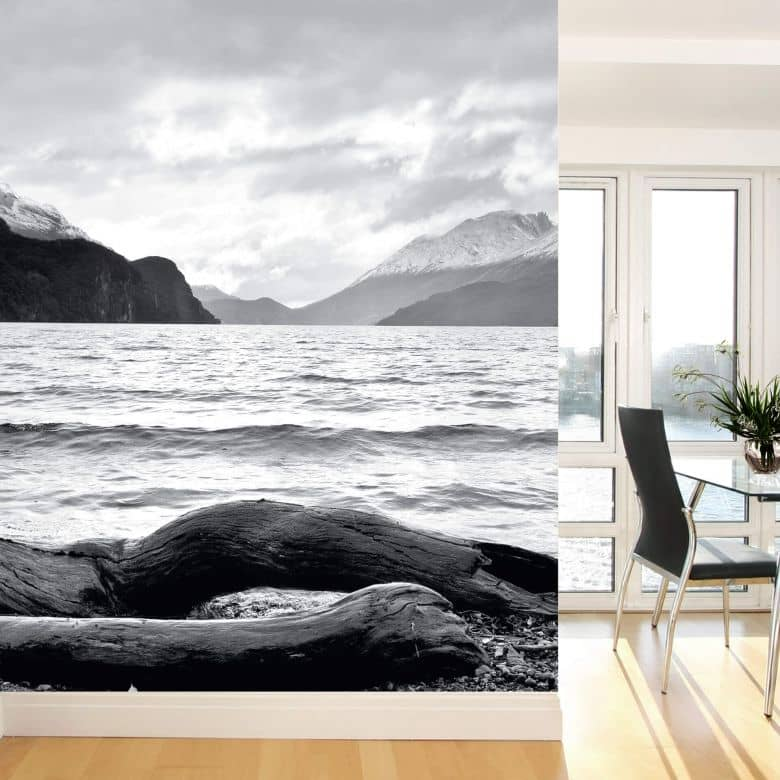 Papier peint photo Log and Lake