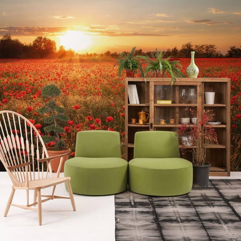 Poppy Field in Sunset - Photo Wallpaper