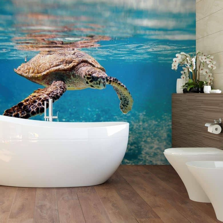 Fototapete Schildkröte auf Reisen