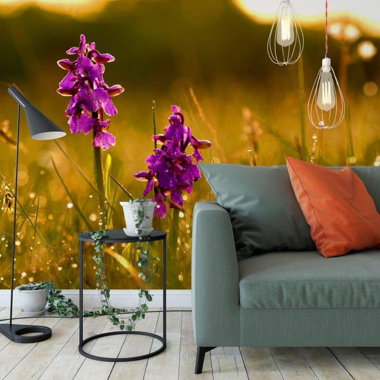 Fototapete Blumen im Morgentau