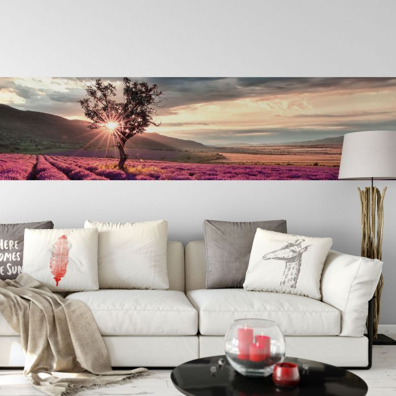 Fototapete Lavendelblüte in der Provence - Panorama - 48x260 cm