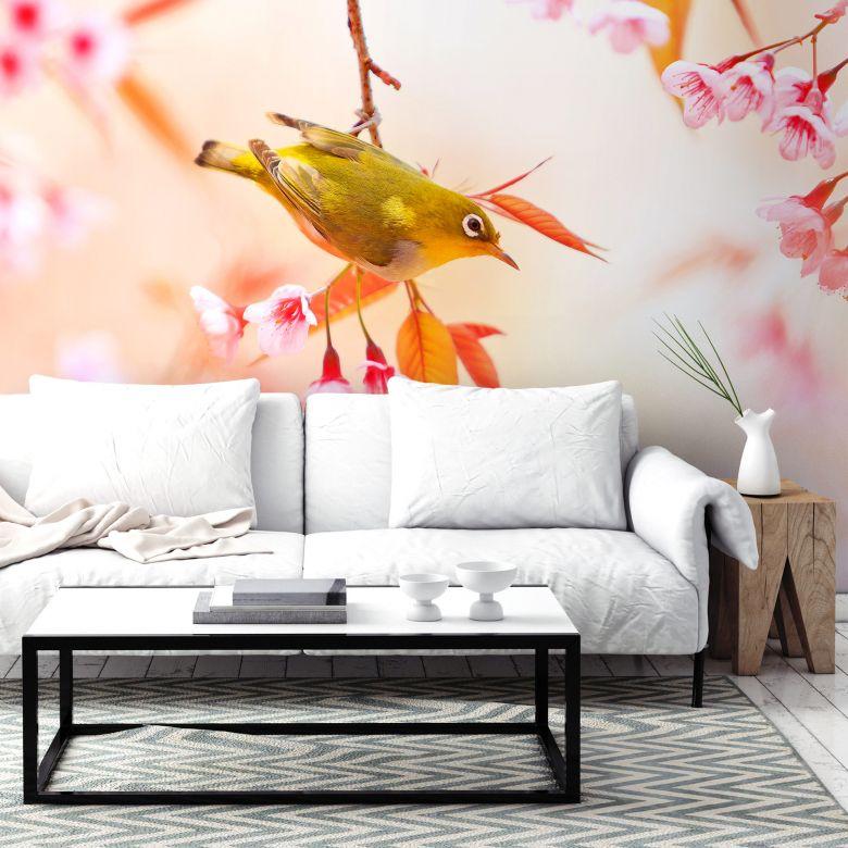 Fototapete Vogelgezwitscher in der Kirschblüte