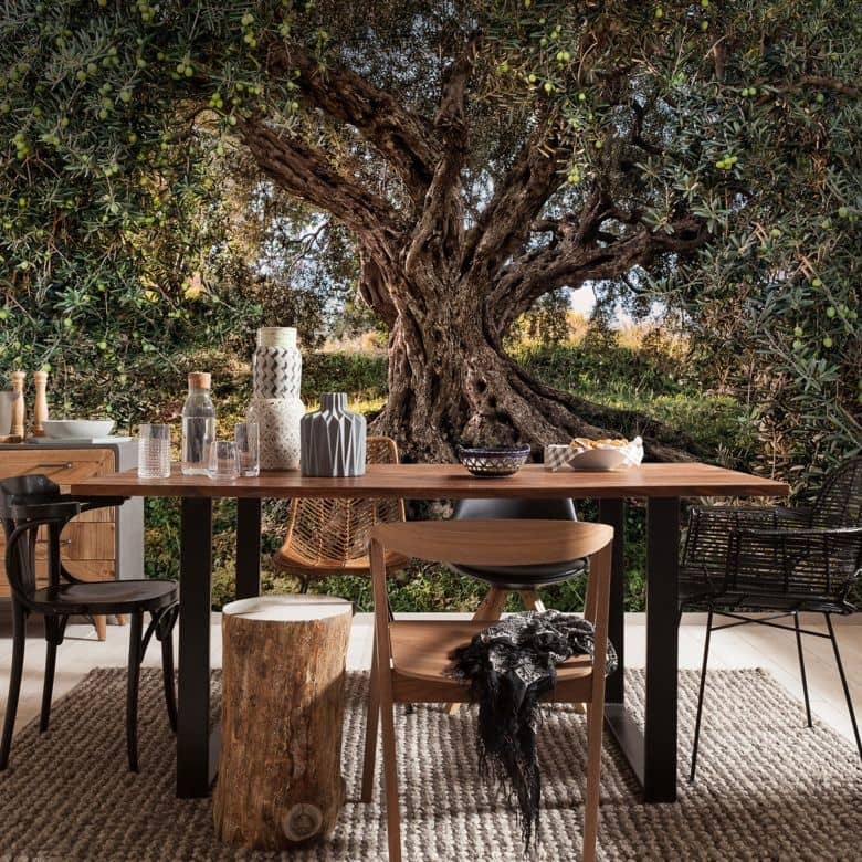Photo Wallpaper Paper Olive Tree