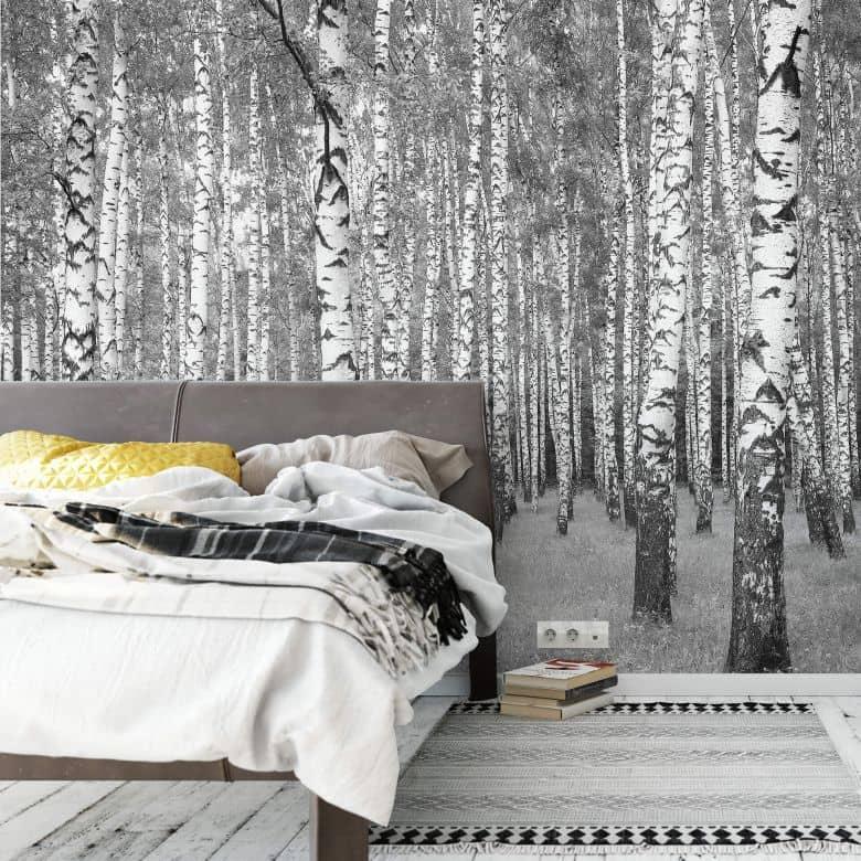 Photo wallpaper – Birch Forest