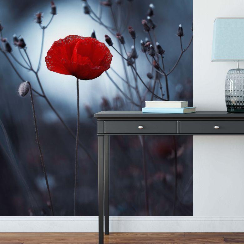 Fototapete - Bravin - Mohnblume in der Dämmerung 192x260 cm
