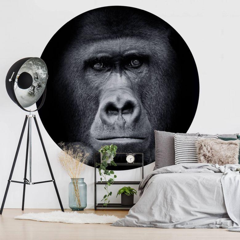 Fototapete Gorilla - Rund