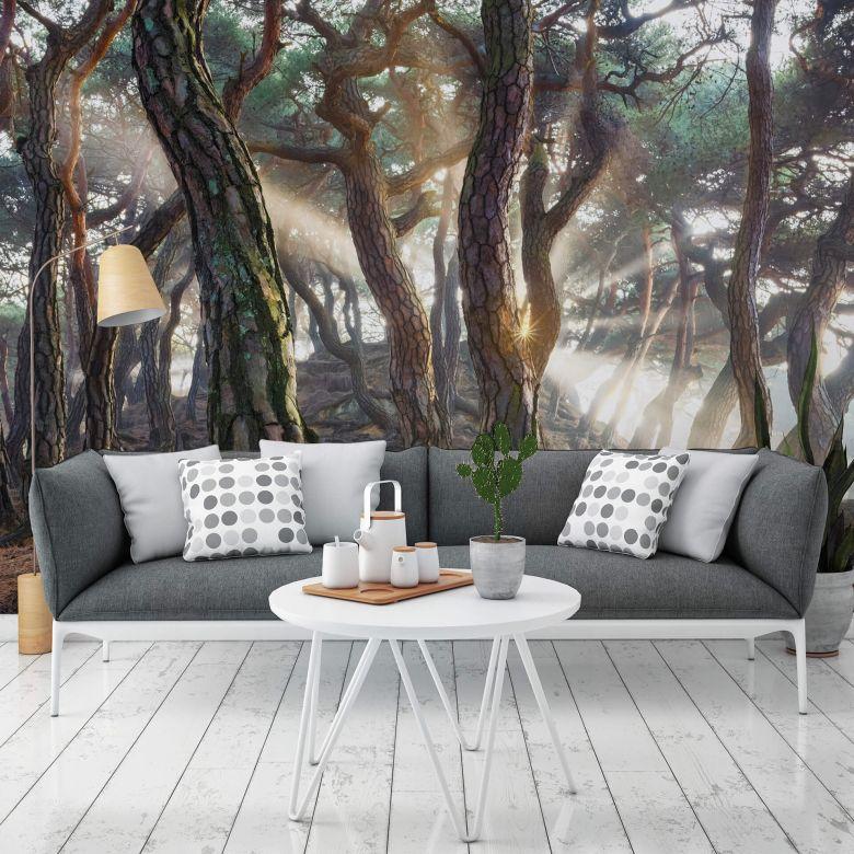 Photo Wallpaper Ryu - Fairytale Forest