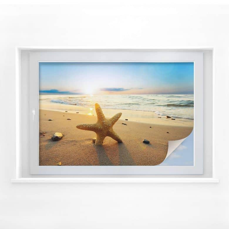 Sichtschutzfolie Seestern im Sand