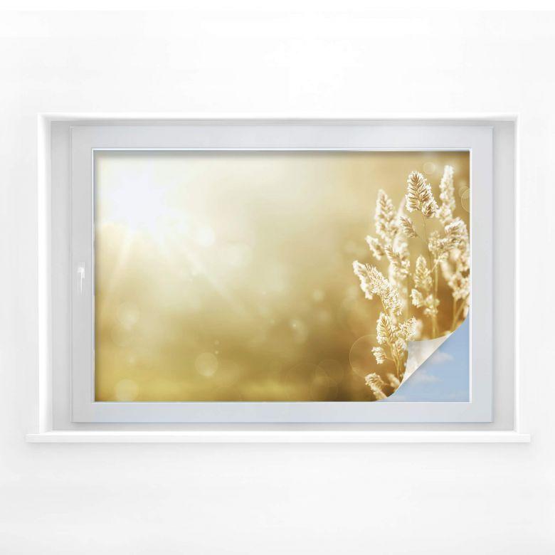 Window foil Sunny Cornfield