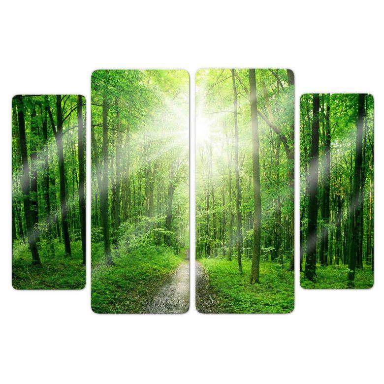 Glasbild Sunny Forest (4-teilig)