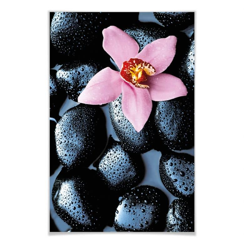 Giant Art® XXL-Poster Stone Orchid - 115x175 cm