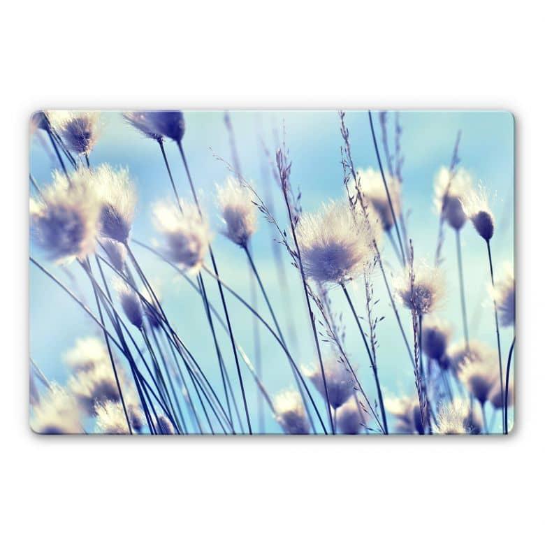 Glasbild Delgado - Wind im Gras