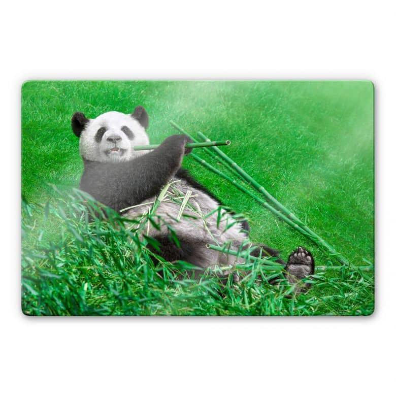 Glasschilderij Ben Heine - Happy Panda