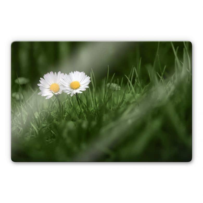 Glasbild Ben Heine - Zwei Gänseblümchen