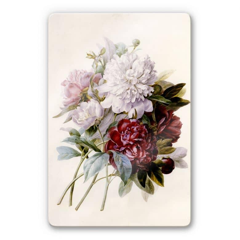 Glasbild Redouté - Strauss von roten, lila und weißen Pfingstrosen