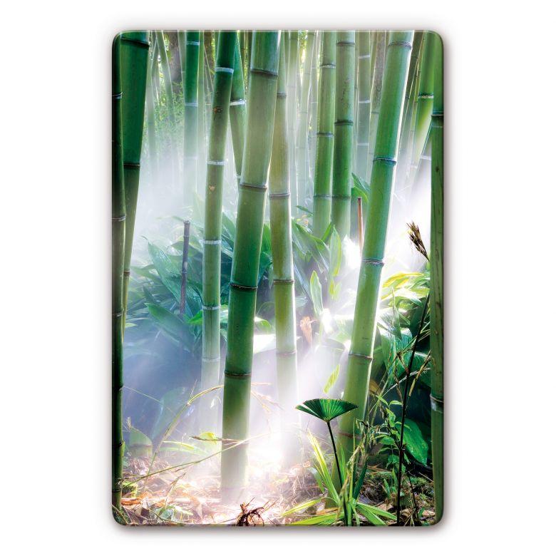glasbild mit bambus entspanntes wandbild in gr nt nen. Black Bedroom Furniture Sets. Home Design Ideas
