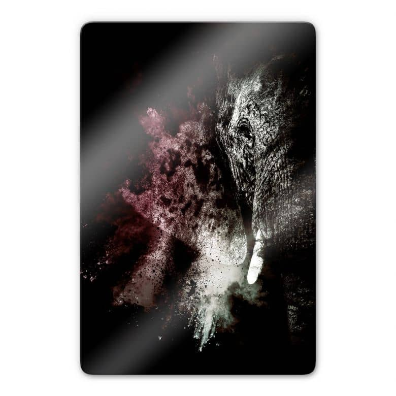 Glasbild Hugonnard - Wild Explosion: Elefant 02