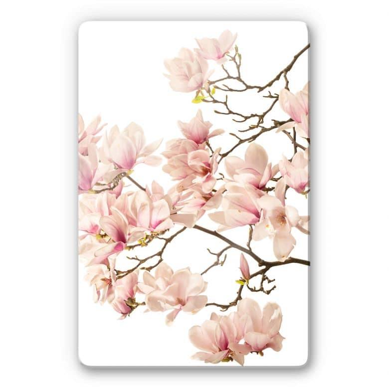 Glasbild Kadam - Flora Magnolia im Frühling