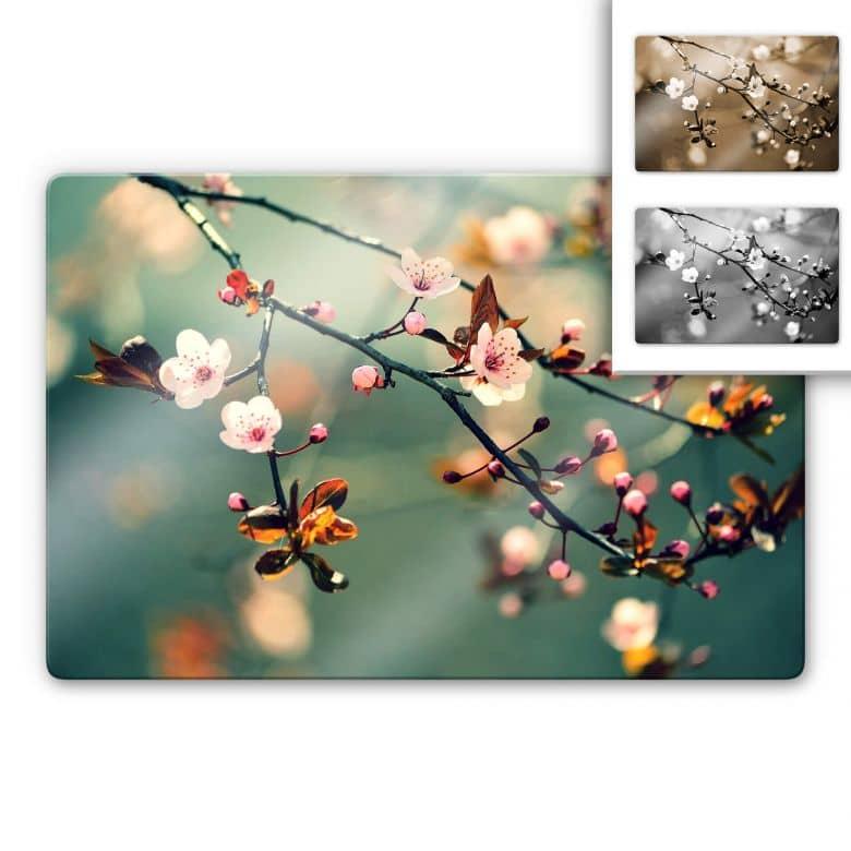 Glasbild Frühlingserwachen