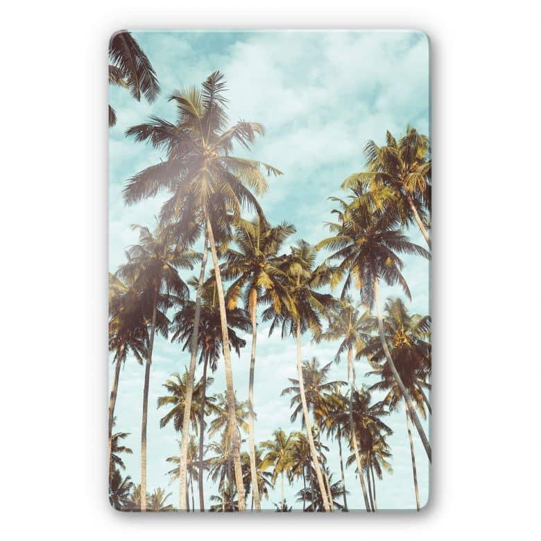 Glasbild Palmen 08
