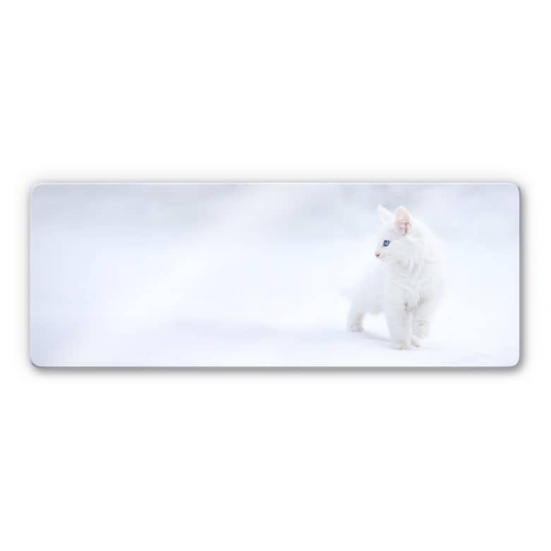 Glasbild Prexus - Weißer als Schnee