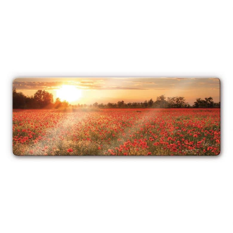 Poppy Field in Sunset Panorama Glass art