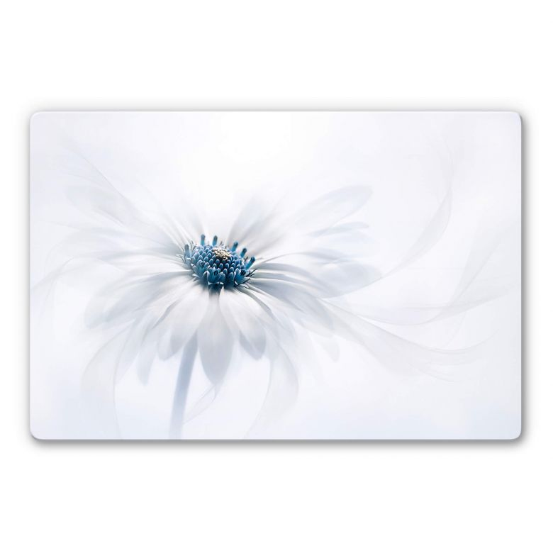 Glass picture Parker - Frozen Flower