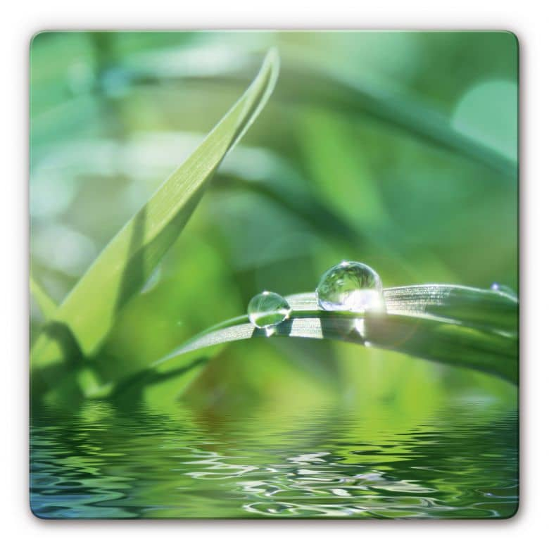 Glasbild Natur 6