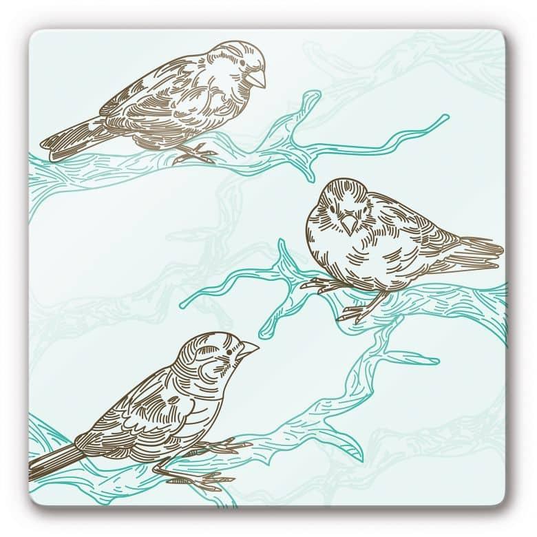 Glasbild Spatzen Illustration - quadratisch