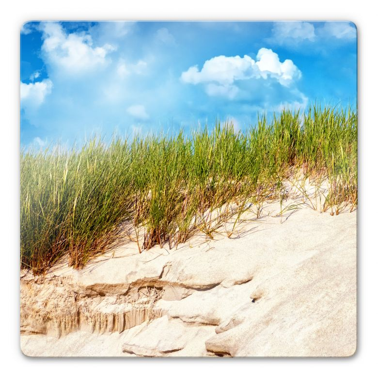 Glasbild Ostsee Dünenlandschaft - quadratisch