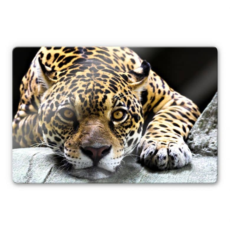 Jaguar Glass art