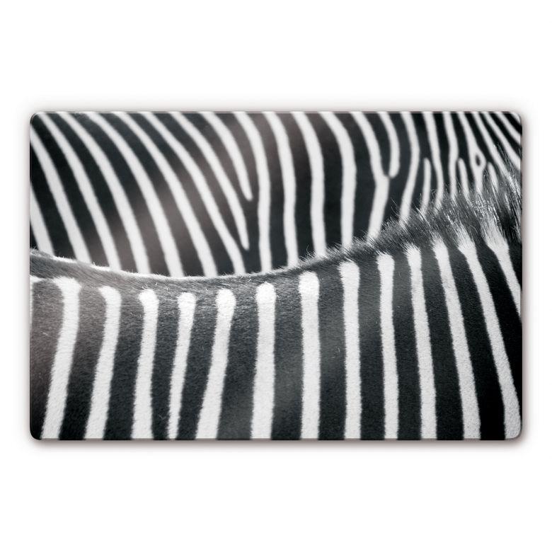 Glasbild Zebramuster