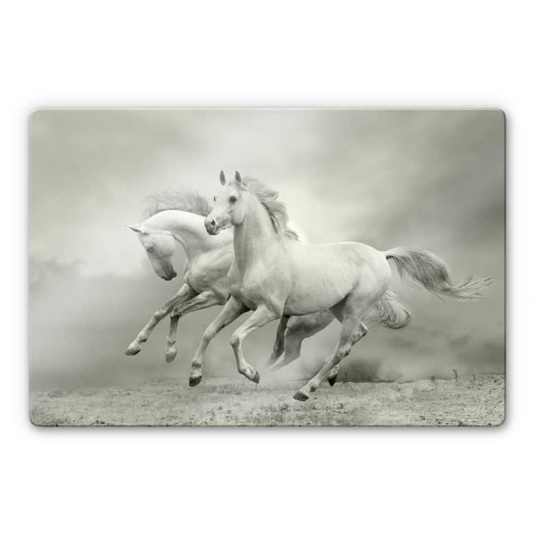 Glasbild Pferde im Galopp