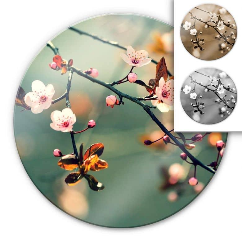 Glasbild Frühlingserwachen - rund