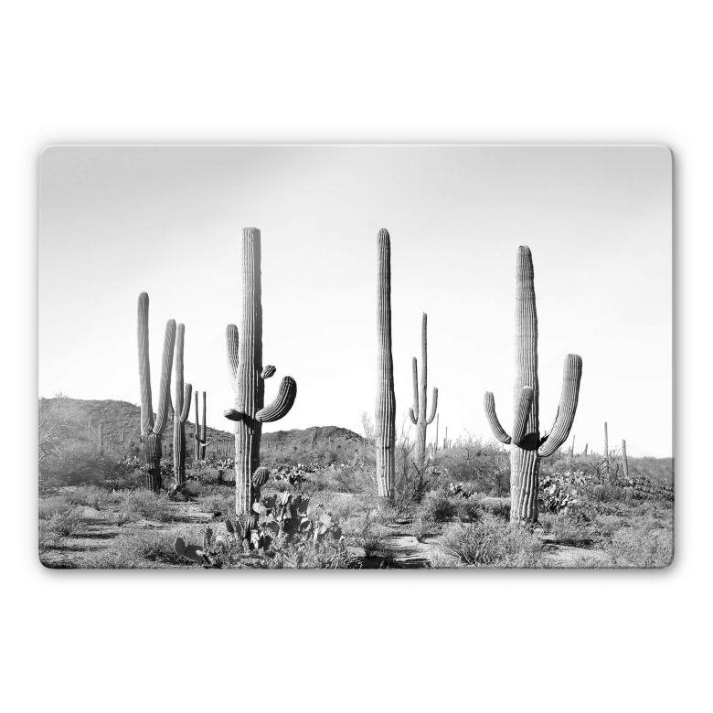 Glasbild Sisi & Seb - Kakteen in der Wüste
