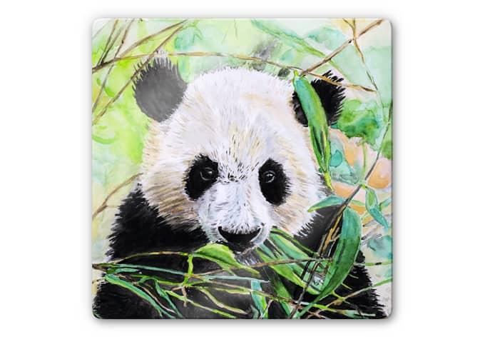 Glasbild Toetzke - Pandabär - quadratisch