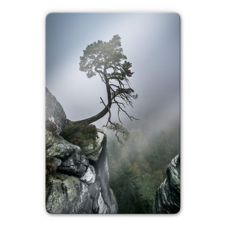 Stampa su vetro Wonisch - Forza della natura
