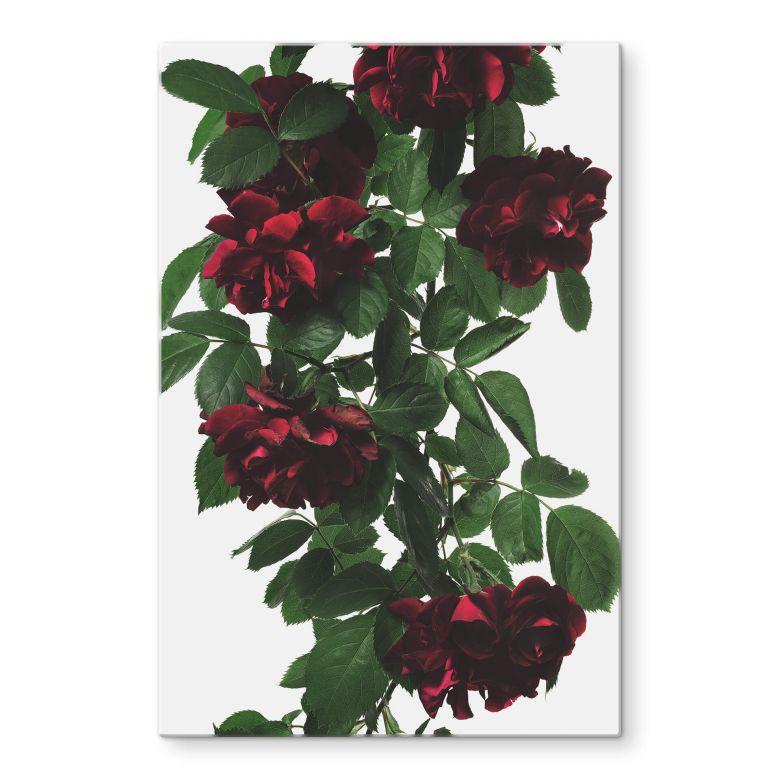 Glasbild Kadam - Flora Rose