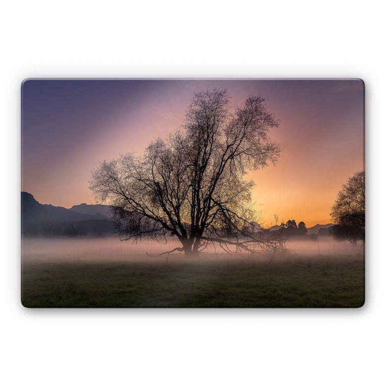 Glasbild Cuadrado - The Fog