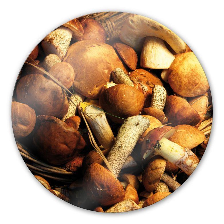 Glasbild Pilzkorb - rund