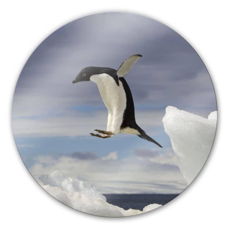 Penguin Fly - Round Glass art