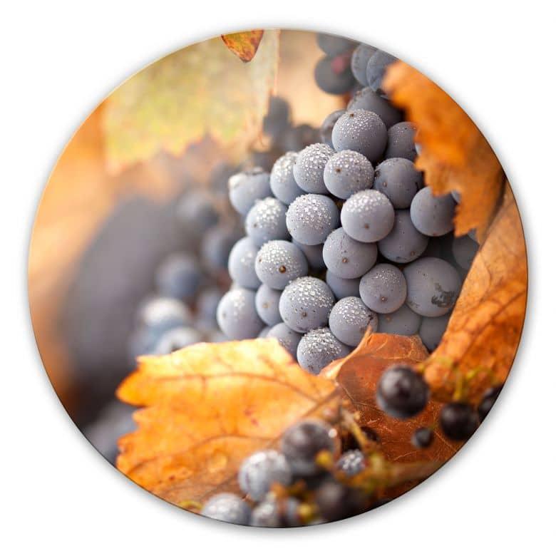 Glasbild Wein im Herbst - rund