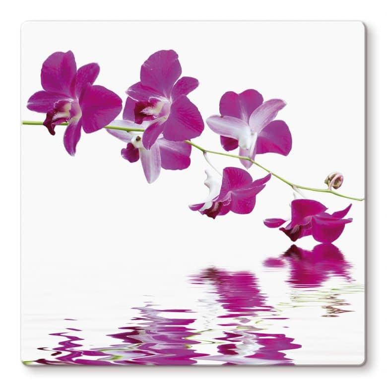 Glasbild Blütenzweig