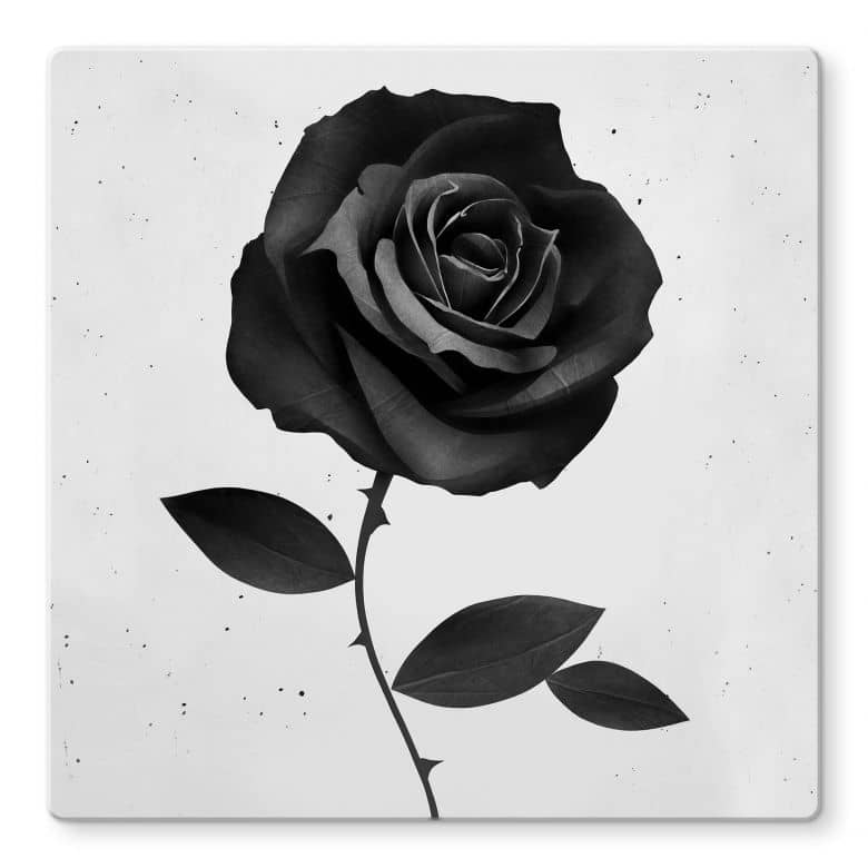 Glasbild Ireland - Fabric Rose - Stoffrose