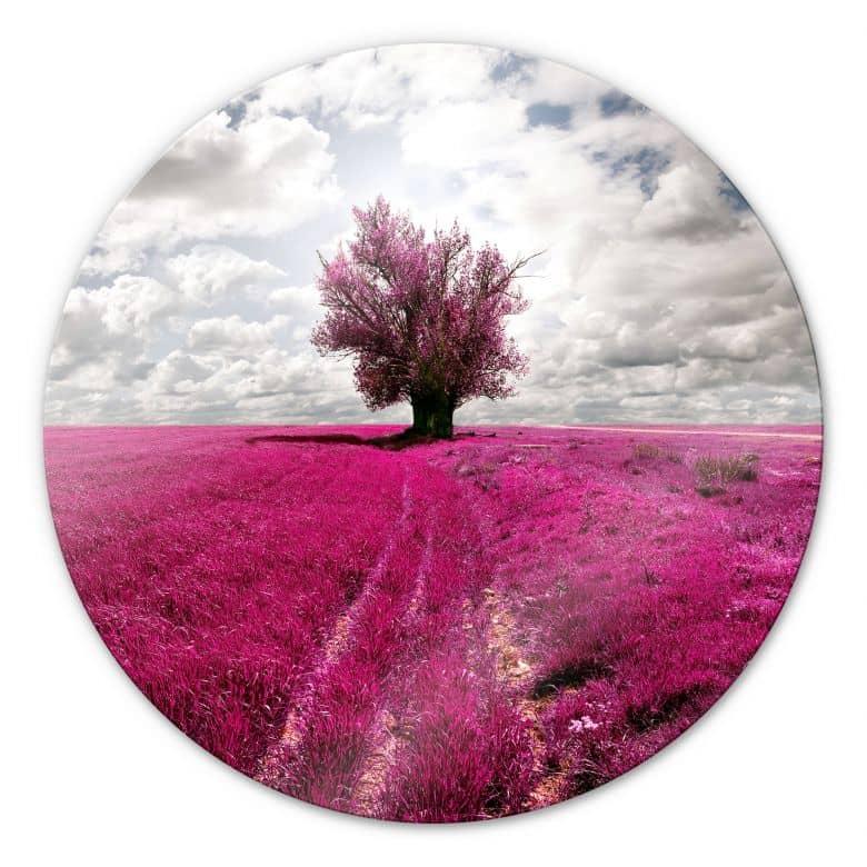 Glasbild The Lonely Tree - rund