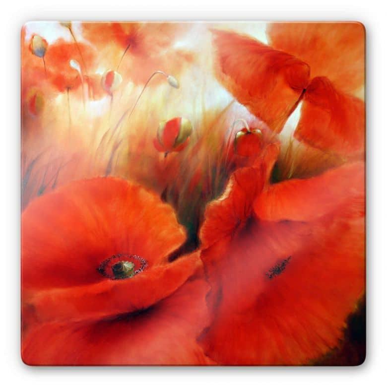 Glasbild Schmucker - Roter Mohn