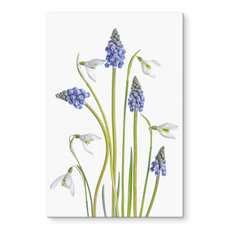 Glass Picture Disher - Spring flowers