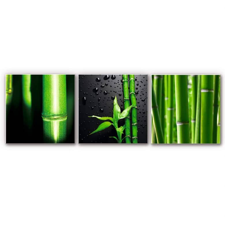 Wandbild Bambus-Set - quadratisch (3-teilig)