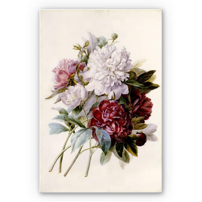 Wandbild Redouté - Strauss von roten, lila und weißen Pfingstrosen